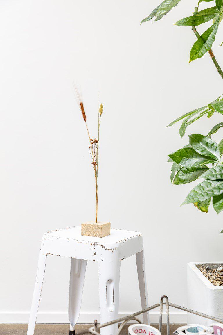 DIY Sustainable Garden in a Bottle from Botanicly: Dry Flower Ensemble 1 (Height: ca. 55 cm, Width: ca. 10 cm)